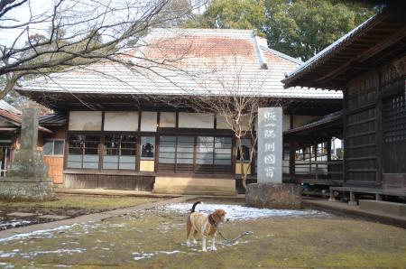20140206しろい七福神②西輪寺07