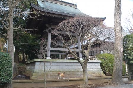 20140206しろい七福神④長楽寺11