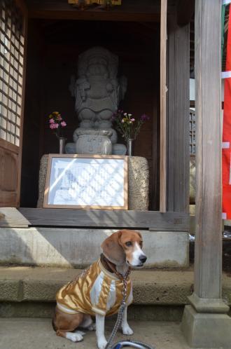 20140206しろい七福神④長楽寺09