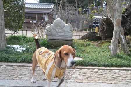 20140206しろい七福神⑤佛法寺03