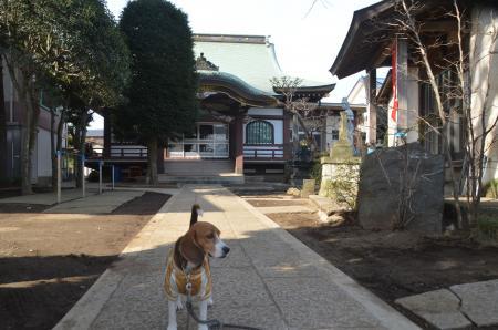20140206しろい七福神⑥秋本寺02