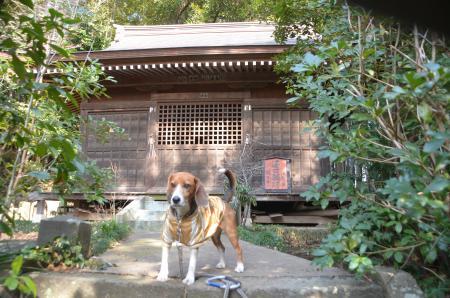 20140206しろい七福神⑦薬王寺08
