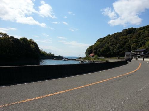 徳島途中の道