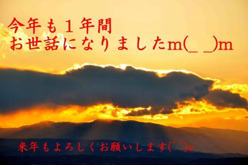 DSC_0041_487_R.jpg