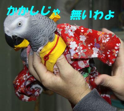 10_かかし