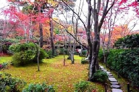 京都 大河内山荘庭園の紅葉15