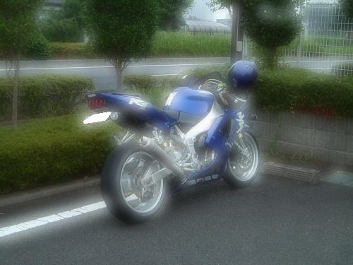 8001.jpg