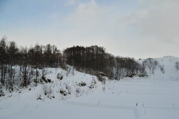 北海道旅行201401(9)