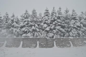 北海道旅行201401(12)