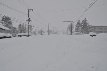 北海道旅行201401(44)