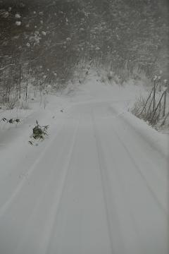 北海道旅行201401(4)
