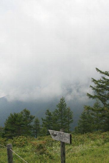 頂上から雲