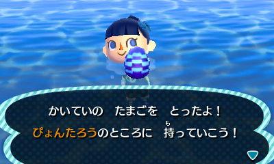 HNI_0019no3.jpg