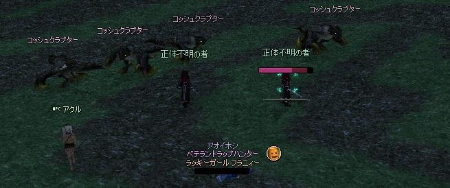 mabinogi_2013_04_30_001.jpg