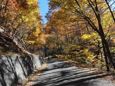 2012-11-10_11-25-57.jpg