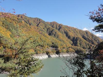 2012-11-10_13-17-44.jpg