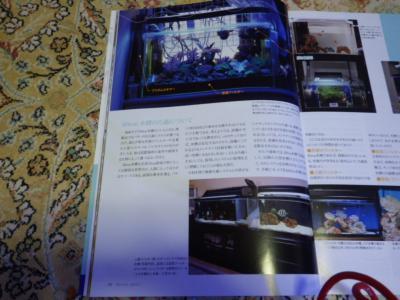 040_20121012211529.jpg