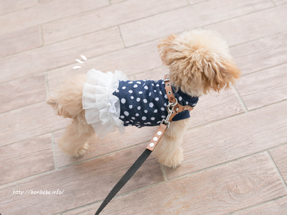 犬 ハンドメイド ワンピース