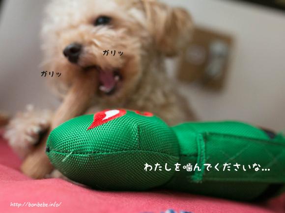おもちゃ 犬 無関心