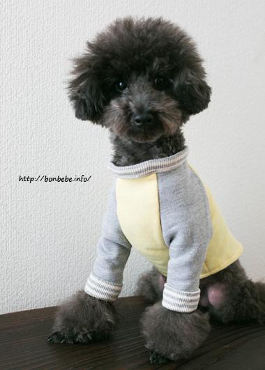 犬服 ニット ハンドメイド