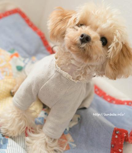 犬服 ワンピース ハンドメイド