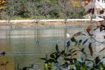 015_convert_20121201133427.jpg
