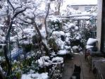 1210庭の積雪