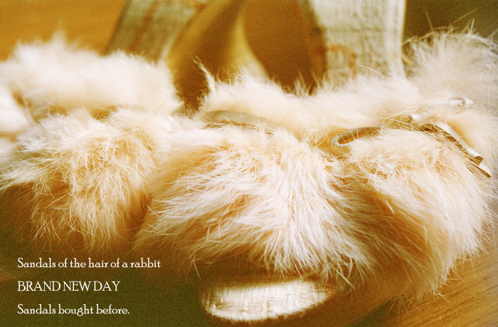 Sandals of the hair of a rabbit 2