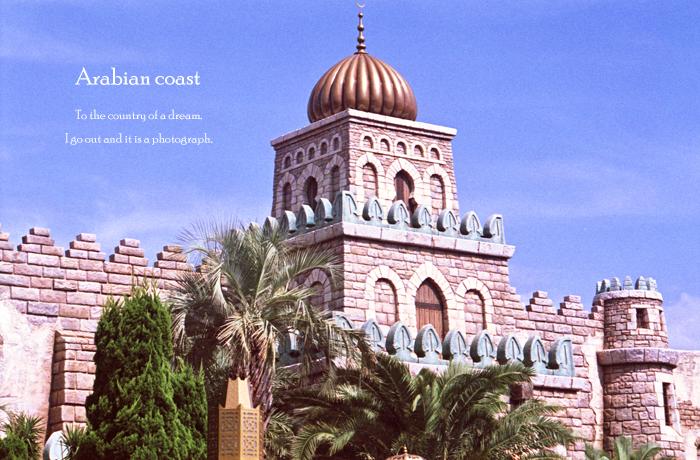 Arabian coast 3