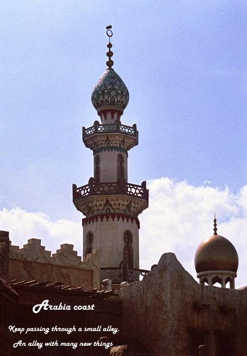 Arabia coast 15