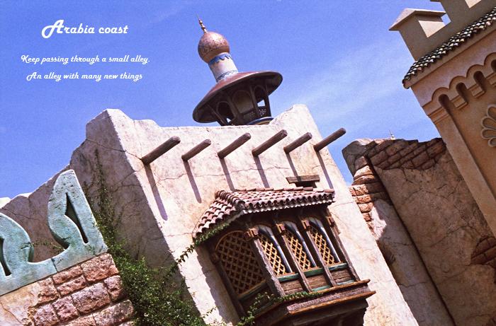 Arabia coast 23