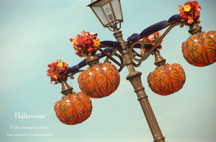Halloween6_20121006171018.jpg