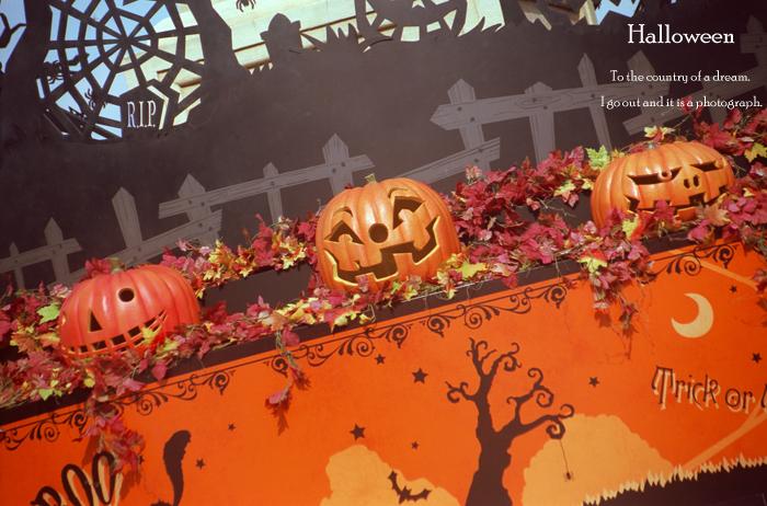 Halloween7_20121006171017.jpg
