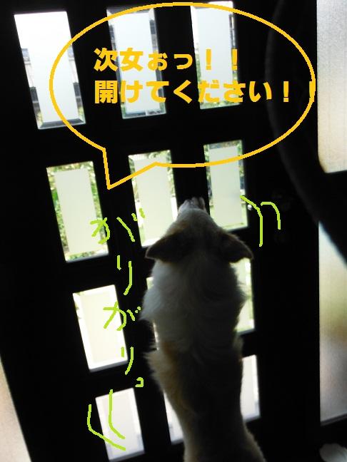 2012-07-28-6.jpg