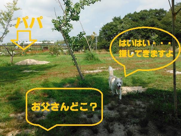 2012-08-03-4.jpg