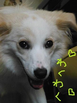 2012-09-05-8.jpg