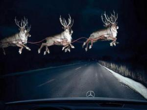 Be+on+the+lookour+for+Reindeer+tonight!+Brittany_convert_20121225131625.jpg