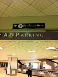 Bush+Airport_convert_20120518001450.jpg