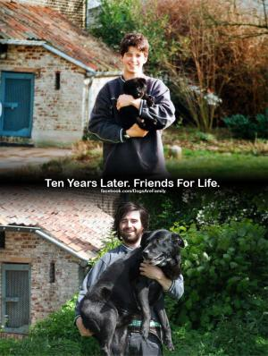 Dogs+are+loyal+friends+for+life_convert_20120701191709.jpg