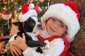 Whole+Lotta+Dogs_convert_20121224135950.jpg