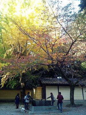 香川旅行4