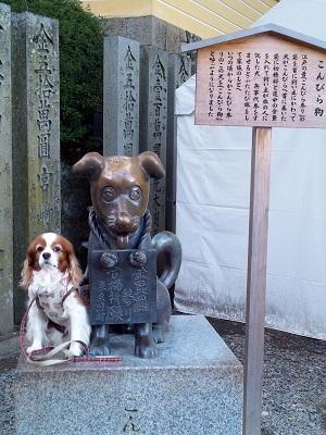 香川旅行11