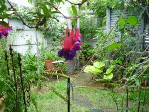 616のブランの庭