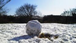 初雪・つくりかけの雪だるま
