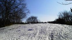 初雪・つくりかけの雪だるまの丘