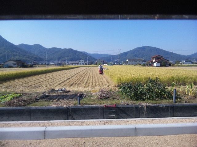 DVC00127_20121027190115.jpg
