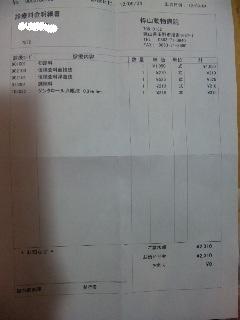 DVC00164_20120904202318.jpg
