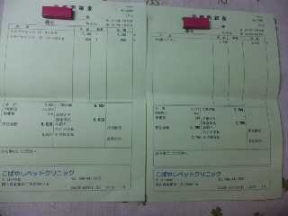 DVC00713_20120619123341.jpg
