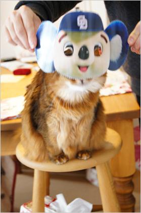ドアラになった猫のモンさん