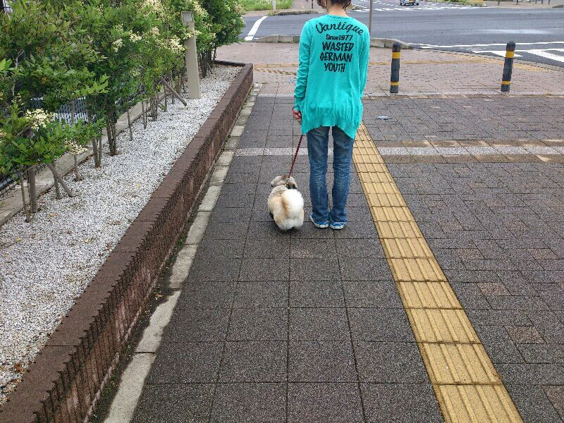 fc2blog_2012061108175633a.jpg
